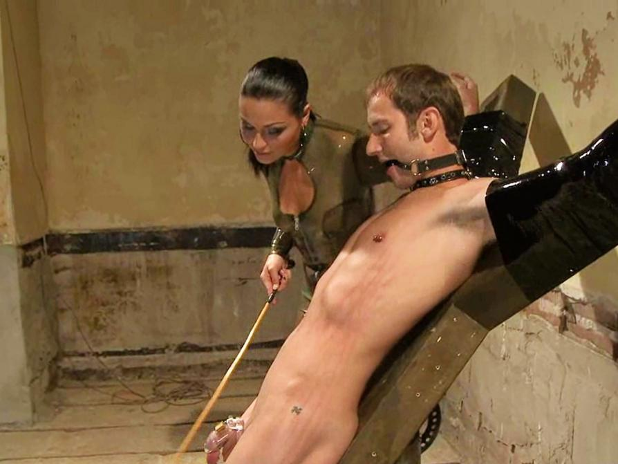 Male tortured sex pictures 10